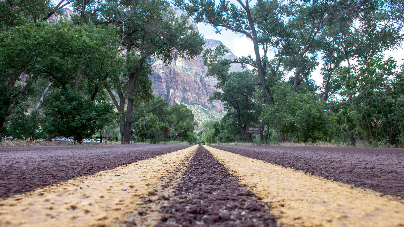Road lines in Zion National Park