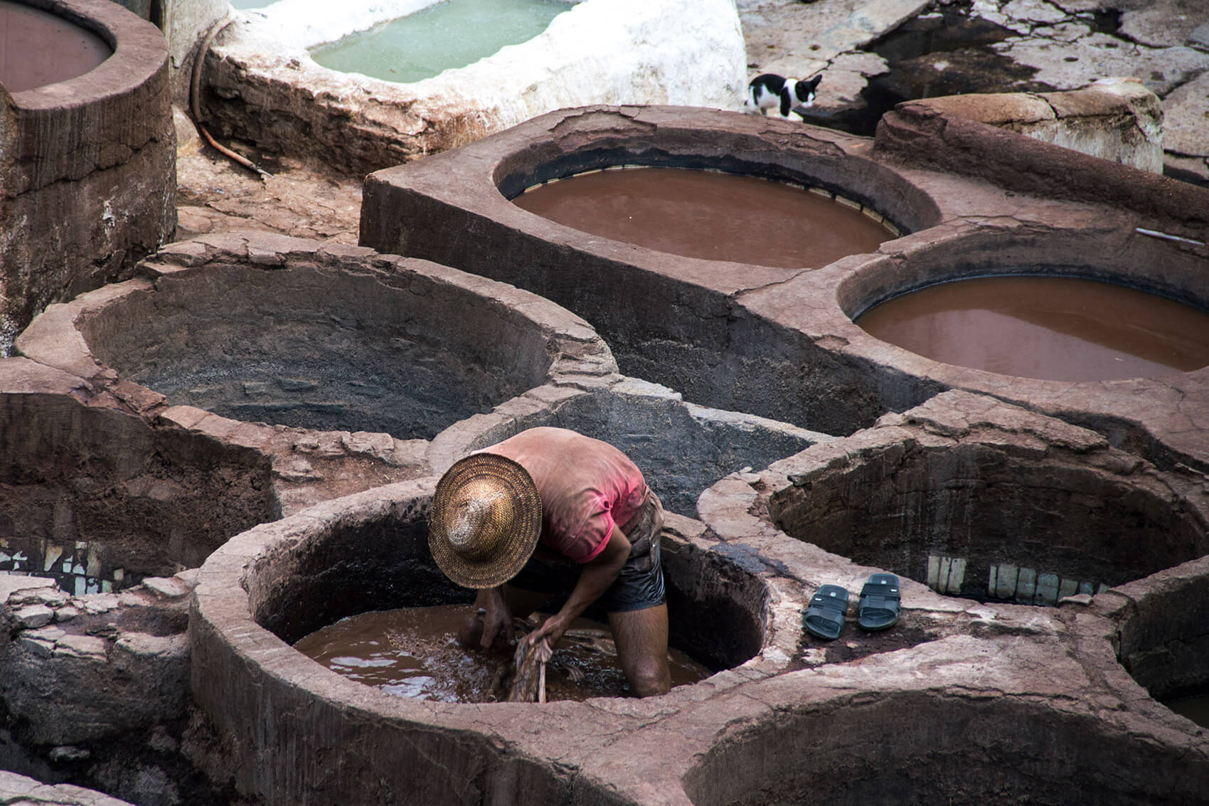 Skin tannery in Fes